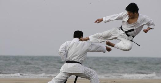 Jepang Karate